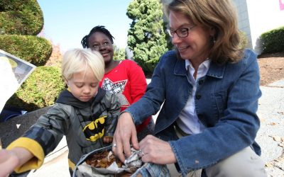 Rocky Hill Country Day: Home of Transformative Education